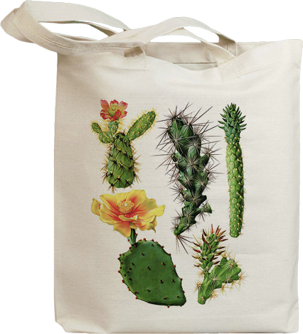 Retro Cactus Flower 10 Eco Friendly Canvas Tote Bag